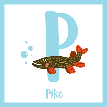 Pike Fish. Cute Children ABC Zoo Alphabet Flash Card. Funny