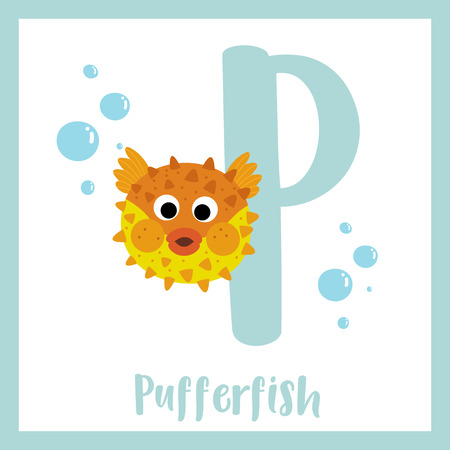P letter vocabulary. Pufferfish. Cute children ABC zoo alphabet flash card. Funny cartoon animal. Kids abc education. Learning English vocabulary. Vector illustration.