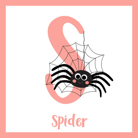 S letter vocabulary. Black Spider with spider web. Cute children ABC zoo alphabet flash card. Funny cartoon animal. Kids abc education. Learning English vocabulary. Vector illustration. Illustration
