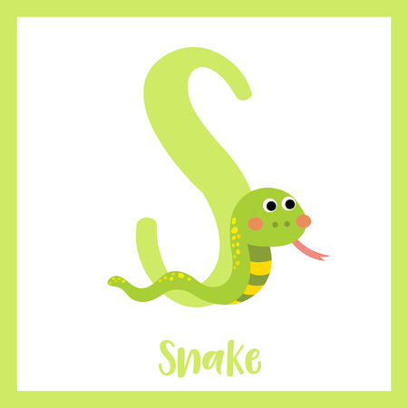 S letter vocabulary. Green Snake. Cute children ABC zoo alphabet flash card. Funny cartoon animal. Kids abc education. Learning English vocabulary. Vector illustration.