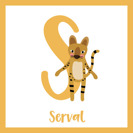 cat s: S letter vocabulary. Serval Cat. Cute children ABC zoo alphabet flash card. Funny cartoon animal. Kids abc education. Learning English vocabulary. Vector illustration.