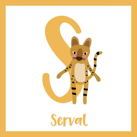 az: S letter vocabulary. Serval Cat. Cute children ABC zoo alphabet flash card. Funny cartoon animal. Kids abc education. Learning English vocabulary. Vector illustration.