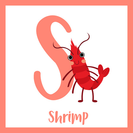 az: S letter vocabulary. Standing Shrimp. Cute children ABC zoo alphabet flash card. Funny cartoon animal. Kids abc education. Learning English vocabulary. Vector illustration. Illustration
