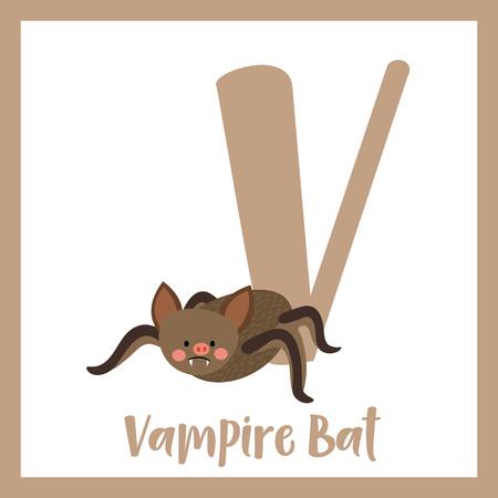 az: V letter vocabulary. Vampire Bat. Cute children ABC zoo alphabet flash card. Funny cartoon animal. Kids abc education. Learning English vocabulary. Vector illustration.