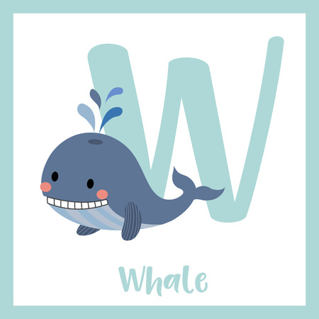 az: W letter vocabulary. Blue Whale with water splash. Cute children ABC zoo alphabet flash card. Funny cartoon animal. Kids abc education. Learning English vocabulary. Vector illustration.