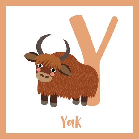 buey: Y letter vocabulary. Yak. Cute children ABC zoo alphabet flash card. Funny cartoon animal. Kids abc education. Learning English vocabulary. Vector illustration.
