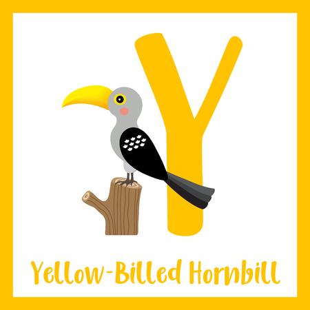 Y letter vocabulary. Yellow-Billed Hornbill bird. Cute children ABC zoo alphabet flash card. Funny cartoon animal. Kids abc education. Learning English vocabulary. Vector illustration. Illustration