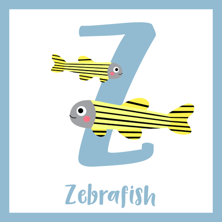 zebrafish: Z letter vocabulary. Zebrafish. Cute children ABC zoo alphabet flash card. Funny cartoon animal. Kids abc education. Learning English vocabulary. Vector illustration.