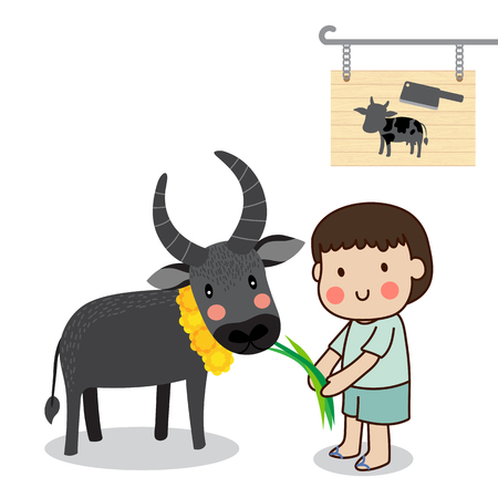 Boy feeding a buffalo and saving cattle lives from the Slaughterhouse with white background.