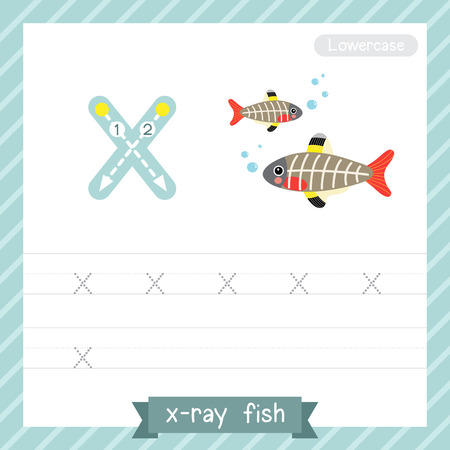 Letter X lowercase tracing practice worksheet with X-ray fish for kids learning to write. Vector Illustration.