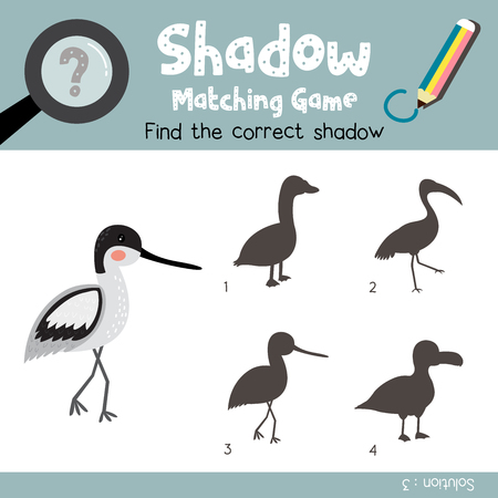 version: Shadow matching game of avocet bird animals for preschool kids activity worksheet colorful version. Vector Illustration.