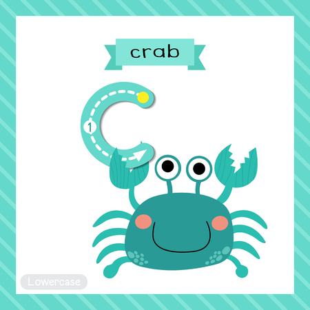 school: Letter C lowercase cute children colorful zoo and animals ABC alphabet tracing flashcard of blue Crab for kids learning English vocabulary and handwriting vector illustration.