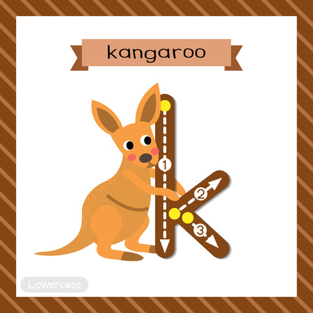 Letter K lowercase cute children colorful zoo and animals ABC alphabet tracing flashcard of Kangaroo for kids learning English vocabulary and handwriting vector illustration.