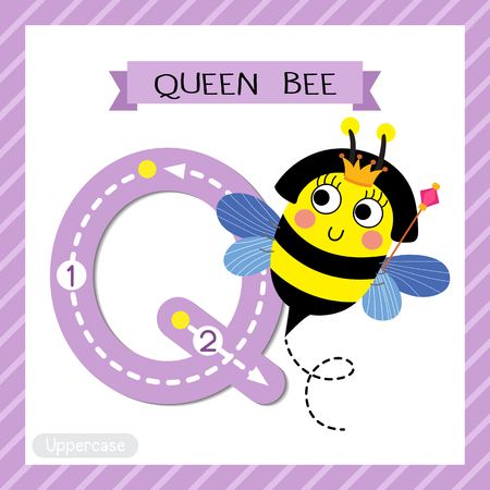 school: Letter Q uppercase cute children colorful zoo and animals ABC alphabet tracing flashcard of Happy Queen Bee holding scepter for kids learning English vocabulary and handwriting vector illustration. Illustration