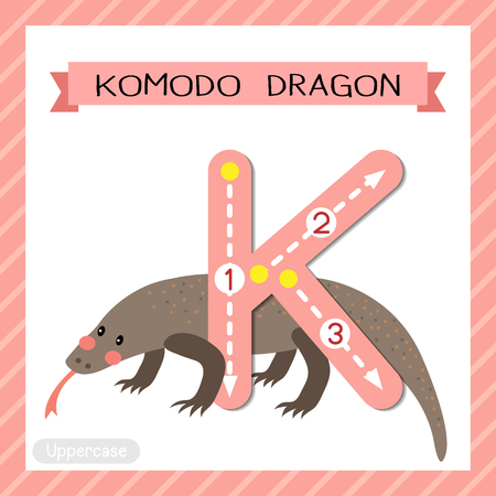 Letter K uppercase cute children colorful zoo and animals ABC alphabet tracing flashcard of Komodo dragon for kids learning English vocabulary and handwriting vector illustration.