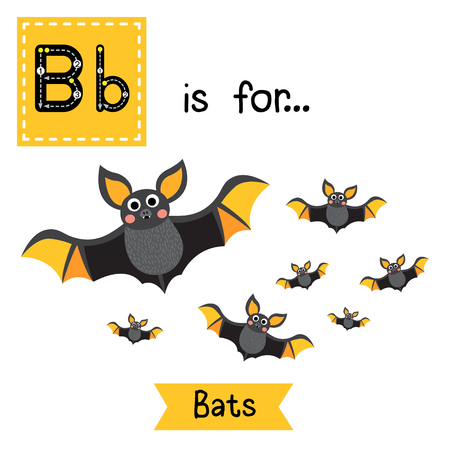 Cute children ABC alphabet B letter tracing flashcard of A Colony of Bats for kids learning English vocabulary in Happy Halloween Day theme. Illustration