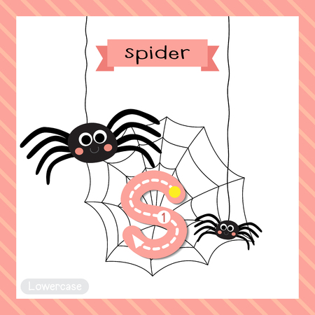 nursery web spider: Letter S lowercase cute children colorful zoo and animals ABC alphabet tracing flashcard of Black Spider for kids learning English vocabulary and handwriting vector illustration. Illustration