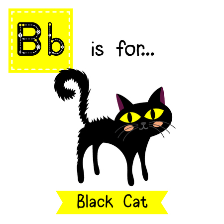 Cute children ABC alphabet B letter tracing flashcard of standing Black Cat for kids learning English vocabulary in Happy Halloween Day theme.