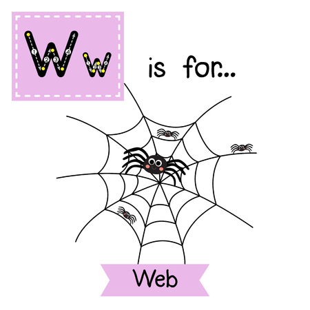 Cute children ABC alphabet W letter tracing flashcard of spider Web for kids learning English vocabulary in Happy Halloween Day theme. Illustration