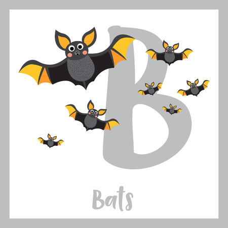 Cute children ABC alphabet B letter flashcard of A Colony of Bats for kids learning English vocabulary in Happy Halloween Day theme. Vector illustration.