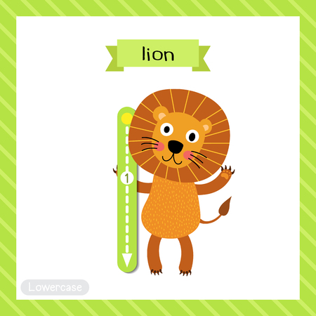 Letter L lowercase cute children colorful zoo and animals ABC alphabet tracing flashcard of Lion standing on two legs for kids learning English vocabulary and handwriting vector illustration. Illustration