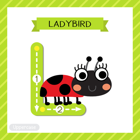 Letter L uppercase cute children colorful zoo and animals ABC alphabet tracing flashcard of Ladybird for kids learning English vocabulary and handwriting vector illustration.