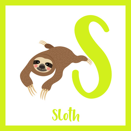 Cute children ABC animal zoo alphabet S letter flashcard of Sloth for kids learning English vocabulary. Vector illustration. Illusztráció