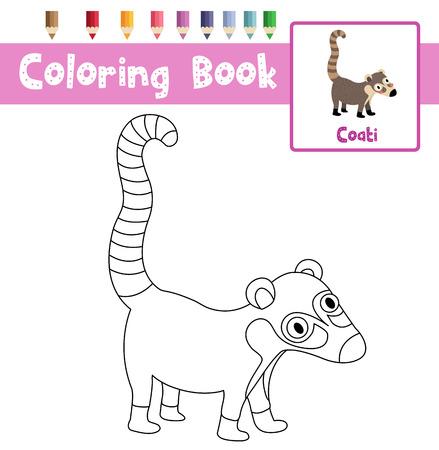 Coloring page of Coati animals for preschool kids activity educational worksheet. Vector Illustration. Illustration
