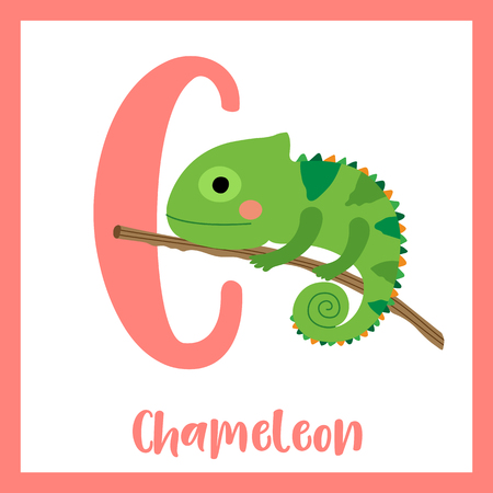 Cute children ABC animal zoo alphabet C letter flashcard of Chameleon climbing on branch for kids learning English vocabulary. Vector illustration. Vettoriali