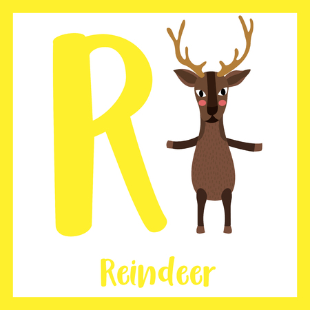 Cute children ABC animal zoo alphabet R letter flashcard of Reindeer standing on two legs for kids learning English vocabulary. Vector illustration. Illustration