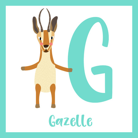 Cute children ABC animal zoo alphabet G letter flashcard of Gazelle standing on two legs for kids learning English vocabulary. Vector illustration.