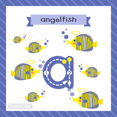 Letter A lowercase cute children colorful zoo and animals ABC alphabet tracing flashcard of Angelfish for kids learning English vocabulary and handwriting vector illustration.