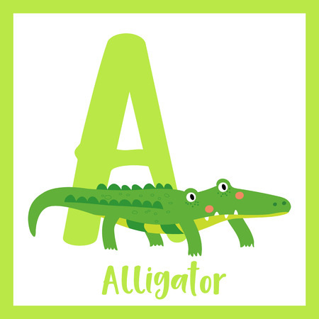 bb70de67a7e9c Cute children ABC animal zoo alphabet A letter flashcard of Green Alligator  for kids learning English