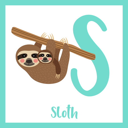 Cute children ABC animal zoo alphabet S letter flashcard of Mother and child Sloth hanging on tree for kids learning English vocabulary. Vector illustration.