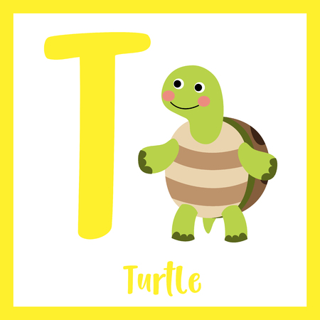 Cute children ABC animal zoo alphabet T letter flashcard of Turtle standing on two legs for kids learning English vocabulary. Vector illustration.