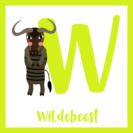 Cute children ABC animal zoo alphabet W letter flashcard of Wildebeest standing on two legs for kids learning English vocabulary. Vector illustration.
