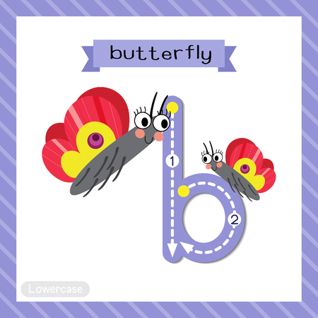 Letter B lowercase cute children colorful zoo and animals ABC alphabet tracing flashcard of Butterfly for kids learning English vocabulary and handwriting vector illustration.