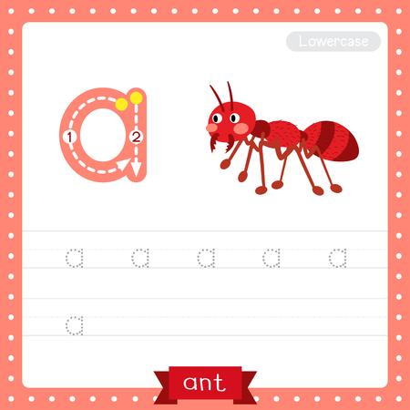 Letra A minúscula niños lindos coloridos zoológico y animales ABC alfabeto rastreo práctica hoja de trabajo de hormiga de fuego para niños que aprenden vocabulario en inglés y escritura a mano ilustración vectorial.