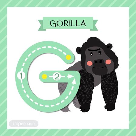 Lettre G majuscule enfants mignons colorés zoo et animaux ABC alphabet traçant flashcard de gorille pour les enfants apprenant le vocabulaire anglais et l'illustration vectorielle de l'écriture manuscrite. Vecteurs