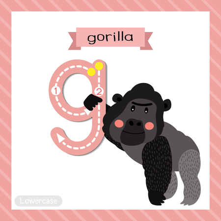 Letter G lowercase cute children colorful zoo and animals ABC alphabet tracing flashcard of Gorilla for kids learning English vocabulary and handwriting vector illustration. Illustration