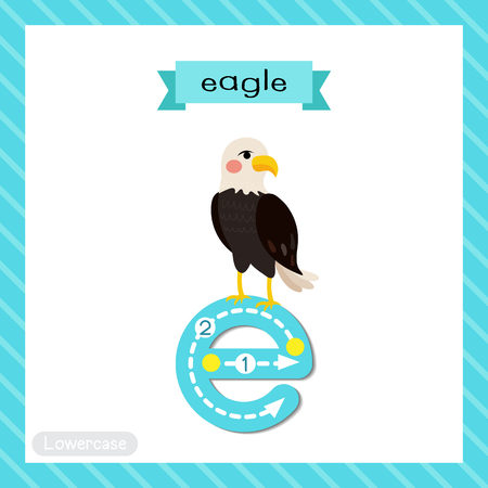 Letter E lowercase cute children colorful zoo and animals ABC alphabet tracing flashcard of Standing Eagle for kids learning English vocabulary and handwriting vector illustration. Vektoros illusztráció