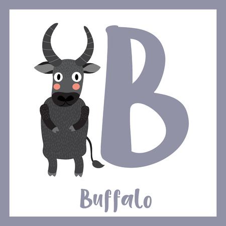 Cute children ABC animal zoo alphabet B letter flashcard of Buffalo standing on two legs for kids learning English vocabulary. Vector illustration. Illustration