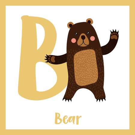 Cute children ABC animal zoo alphabet B letter flashcard of Standing Bear raising two hands for kids learning English vocabulary. Vector illustration.