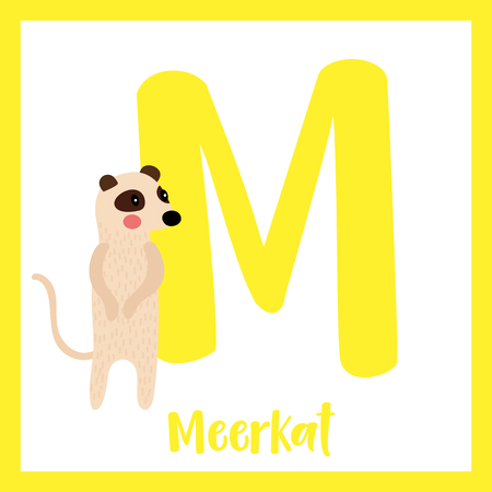 Cute children ABC animal zoo alphabet M letter flashcard of Standing Meerkat for kids learning English vocabulary. Vector illustration.
