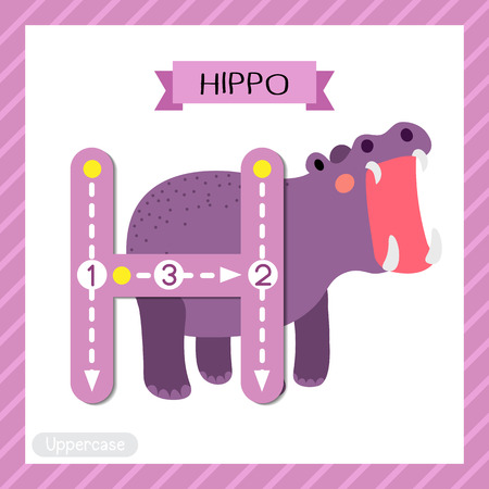 Letter H uppercase cute children colorful zoo and animals ABC alphabet tracing flashcard of Hippopotamus opening mouth for kids learning English vocabulary and handwriting vector illustration.