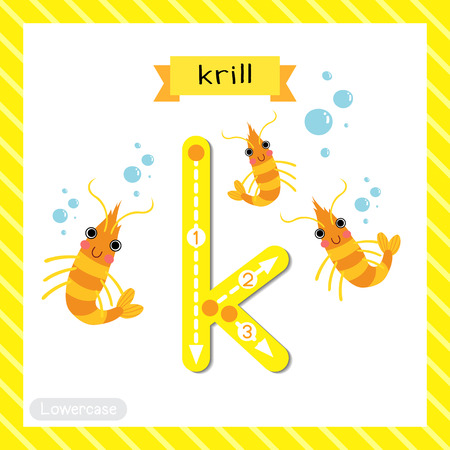 Letter K lowercase cute children colorful zoo and animals ABC alphabet tracing flashcard of Krill for kids learning English vocabulary and handwriting vector illustration.