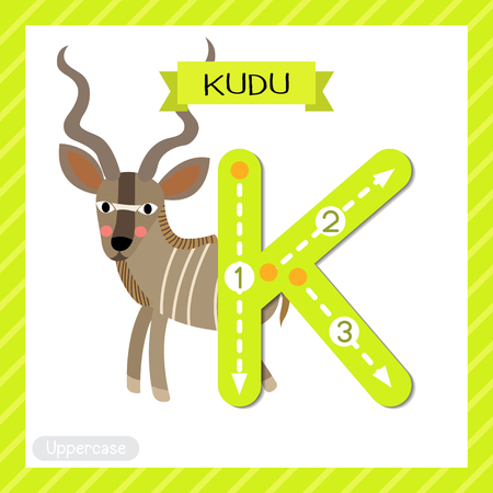 Letter K uppercase cute children colorful zoo and animals ABC alphabet tracing flashcard of Kudu for kids learning English vocabulary and handwriting vector illustration. Stock Vector - 125230203