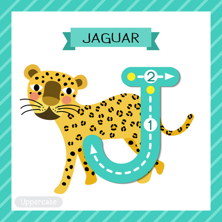 Lettre J majuscule enfants mignons zoo coloré et animaux ABC alphabet traçage flashcard de Walking Jaguar pour les enfants qui apprennent le vocabulaire anglais et l'illustration vectorielle de l'écriture manuscrite. Vecteurs