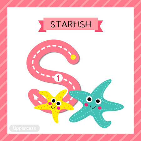 Letter S uppercase cute children colorful zoo and animals ABC alphabet tracing flashcard of Smiling Starfish for kids learning English vocabulary and handwriting vector illustration.