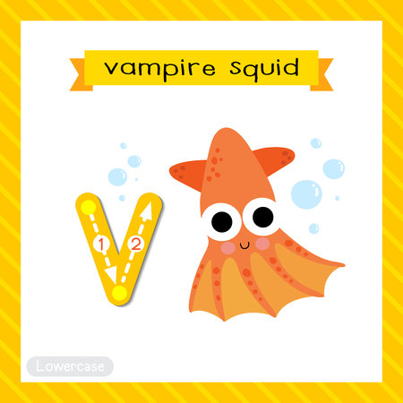 Letter V lowercase cute children colorful zoo and animals ABC alphabet tracing flashcard of Vampire Squid for kids learning English vocabulary and handwriting vector illustration.